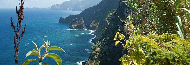 Madeira bei einer 8 tägigen Erlebnisreise erleben!!!